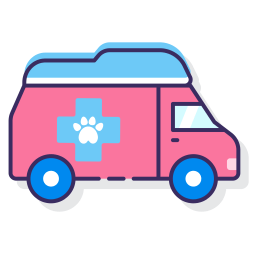mobile vet perth pet transport