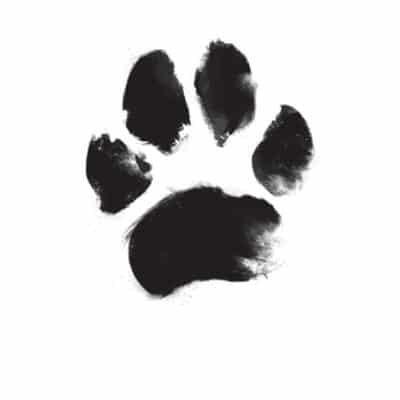 pet-paw-print