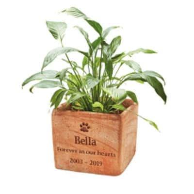 plant pot memorial