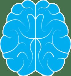 pet central nervous system