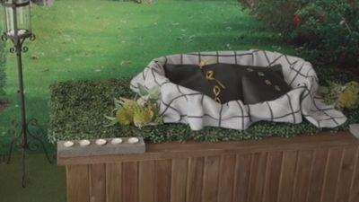 Pet Funerals in Perth